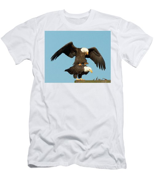Bald Eagles Mating Men's T-Shirt (Athletic Fit)