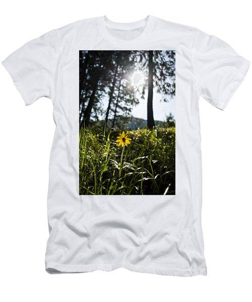 Balsamroot Men's T-Shirt (Athletic Fit)