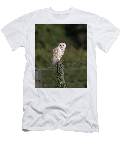 Barn Owl On Ivy Post Men's T-Shirt (Athletic Fit)