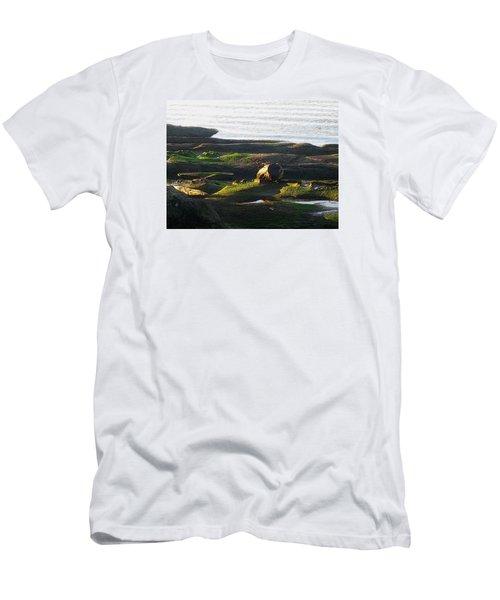 Beachcomber's Gold Men's T-Shirt (Slim Fit) by Anne Havard
