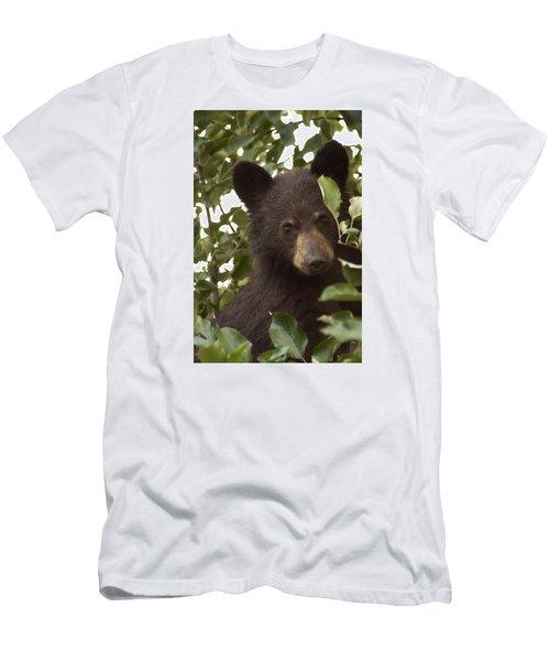 Bear Cub In Apple Tree7 Men's T-Shirt (Slim Fit) by Loni Collins