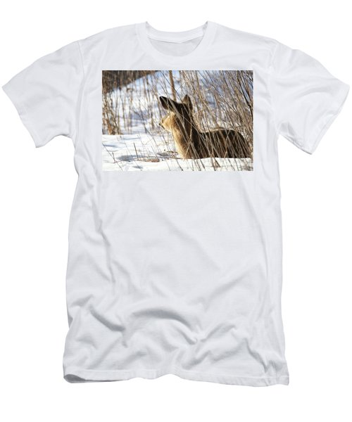 Bedded Fawn 2 Men's T-Shirt (Slim Fit) by Brook Burling