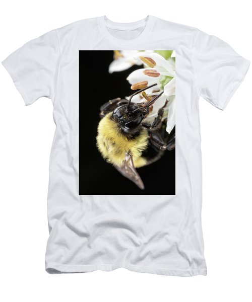 Bee Macro 1 Men's T-Shirt (Athletic Fit)