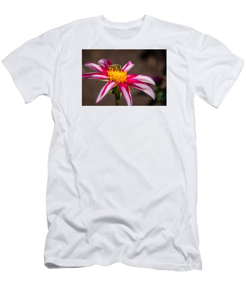 Bee On Dahlia Men's T-Shirt (Athletic Fit)