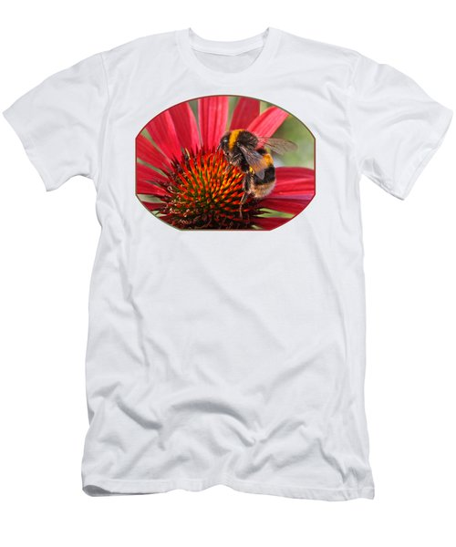 Bee On Red Coneflower 2 Men's T-Shirt (Athletic Fit)