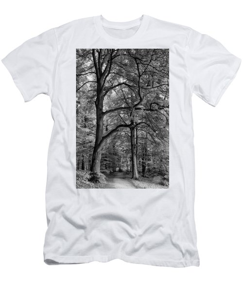 Beech Forest - 365-222 Men's T-Shirt (Slim Fit) by Inge Riis McDonald
