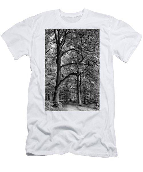 Beech Forest - 365-222 Men's T-Shirt (Slim Fit)