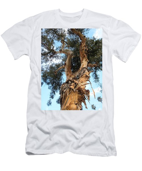 Big Ole Tree Men's T-Shirt (Athletic Fit)