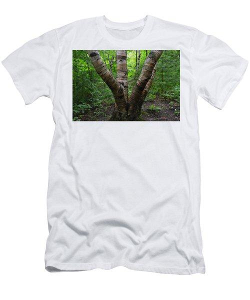 Birch Bark Tree Trunks Men's T-Shirt (Athletic Fit)
