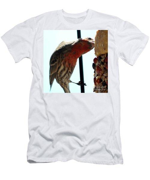 Bird Hits The Jackpot Men's T-Shirt (Athletic Fit)