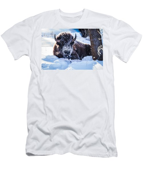 Men's T-Shirt (Slim Fit) featuring the photograph Bison At Frozen Dawn by Yeates Photography