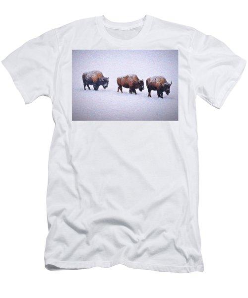 Bison March Impressions Men's T-Shirt (Athletic Fit)