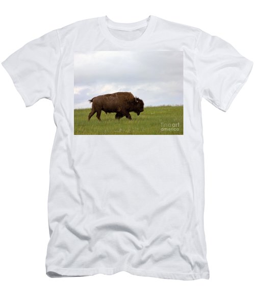 Bison On The American Prairie Men's T-Shirt (Athletic Fit)