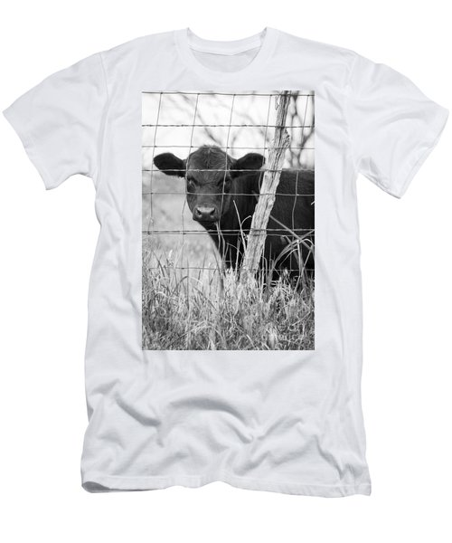 Black Angus Calf Men's T-Shirt (Athletic Fit)