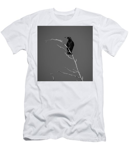 Black Bird On A Branch Men's T-Shirt (Athletic Fit)