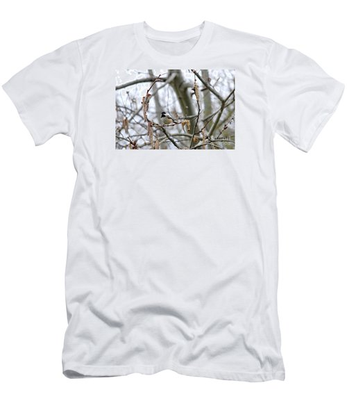 Black-capped Chickadee 20120321_39b Men's T-Shirt (Athletic Fit)