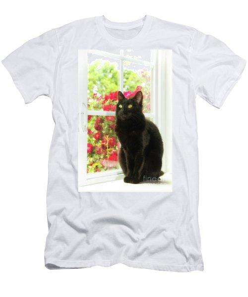 Black Cat In White Frames Men's T-Shirt (Athletic Fit)