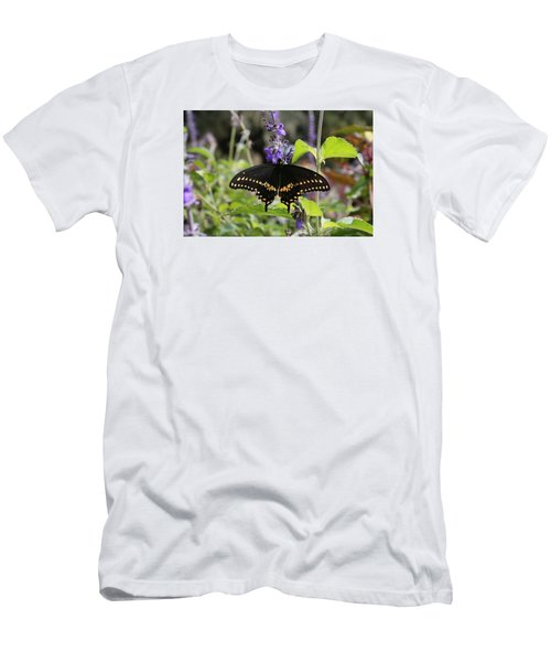 Black Swallowtail Men's T-Shirt (Athletic Fit)