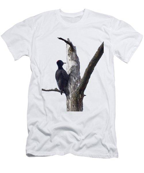 Black Woodpecker Transparent Men's T-Shirt (Athletic Fit)