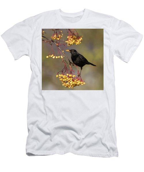 Blackbird Yellow Berries Men's T-Shirt (Athletic Fit)