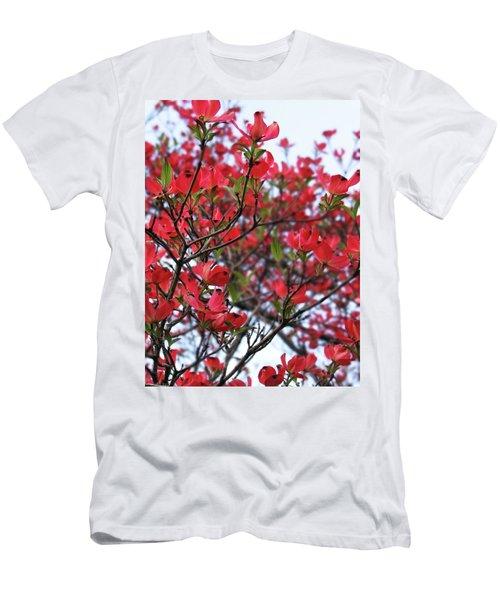Blossoms Men's T-Shirt (Athletic Fit)