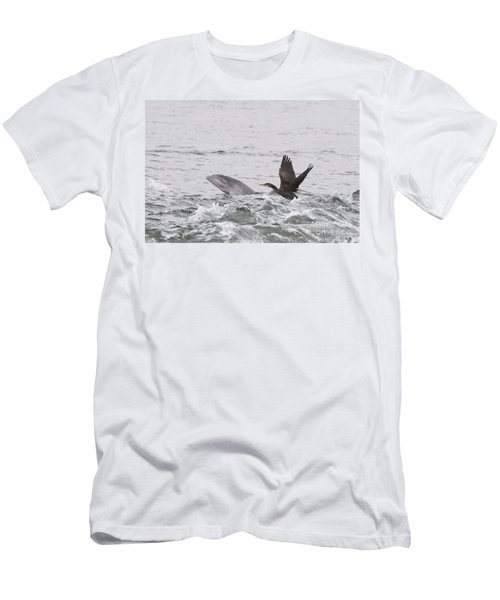 Baby Bottlenose Dolphin - Scotland #10 Men's T-Shirt (Athletic Fit)
