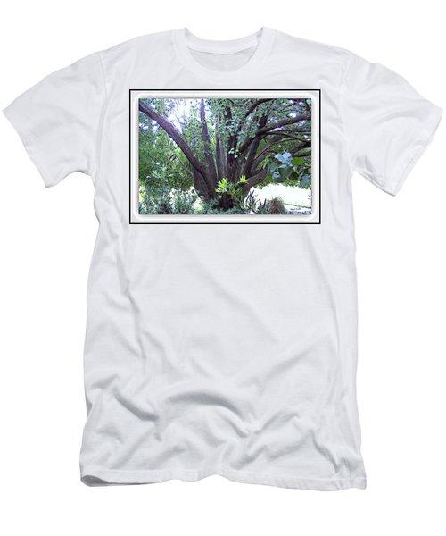 Bradford Men's T-Shirt (Athletic Fit)