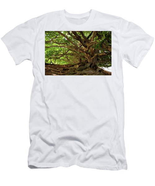 Branches And Roots Men's T-Shirt (Athletic Fit)