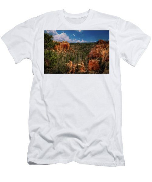 Bryce Canyon From The Top Men's T-Shirt (Athletic Fit)