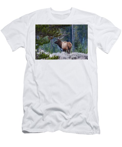 Bull Elk In Forest Men's T-Shirt (Athletic Fit)