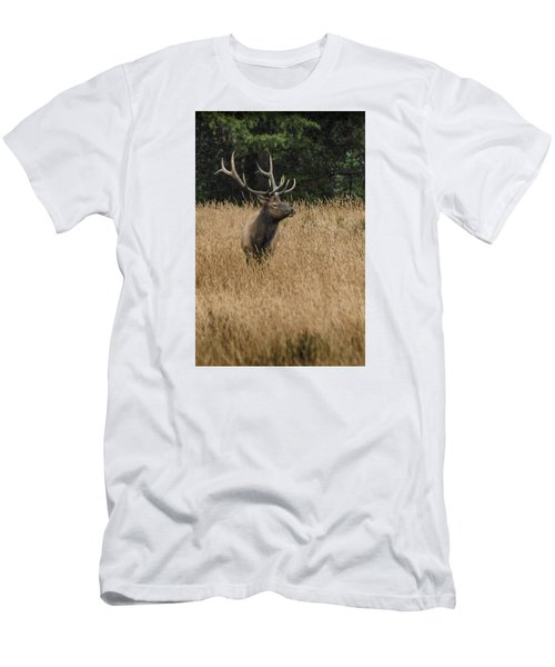 Bull Elk In Yellowstone Men's T-Shirt (Athletic Fit)