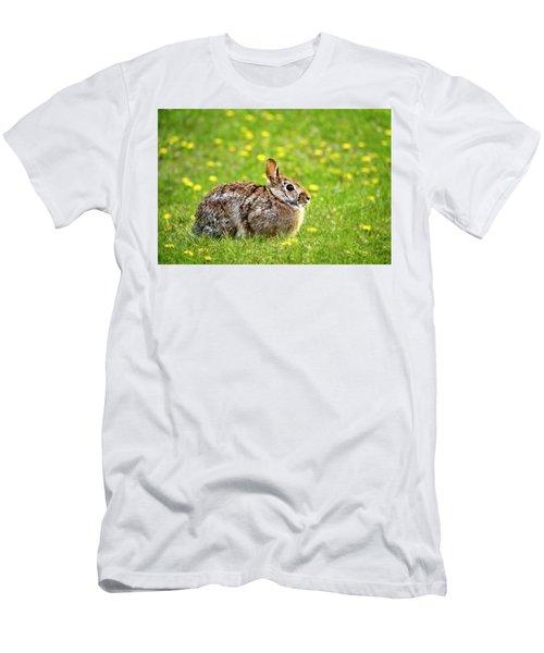 Bunny Rabbit Men's T-Shirt (Athletic Fit)