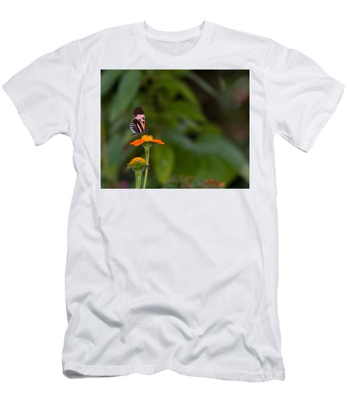 Butterfly 26 Men's T-Shirt (Athletic Fit)
