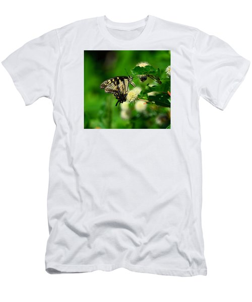 Butterfly And The Bee Sharing Men's T-Shirt (Athletic Fit)
