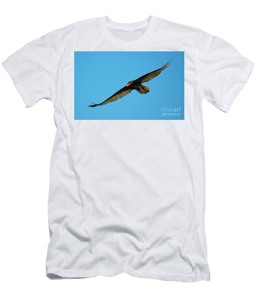 Buzzard Circling Men's T-Shirt (Slim Fit) by Mike Dawson
