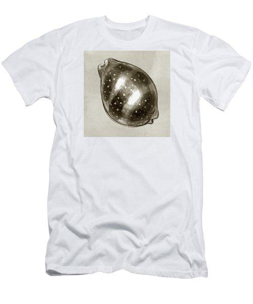 Calf Cowrie Men's T-Shirt (Athletic Fit)