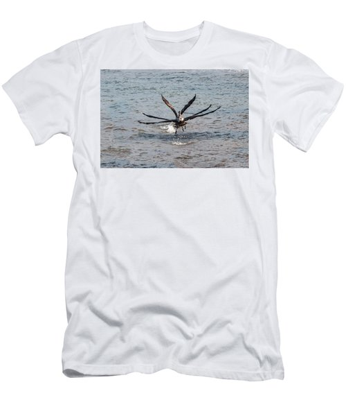 California Brown Pelicans Flying In Tandem Men's T-Shirt (Athletic Fit)