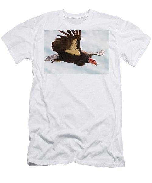 California Condor At Big Sur Men's T-Shirt (Athletic Fit)