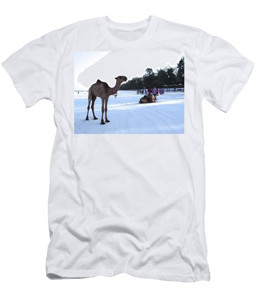 Camel On Beach Kenya Wedding 5 Men's T-Shirt (Athletic Fit)