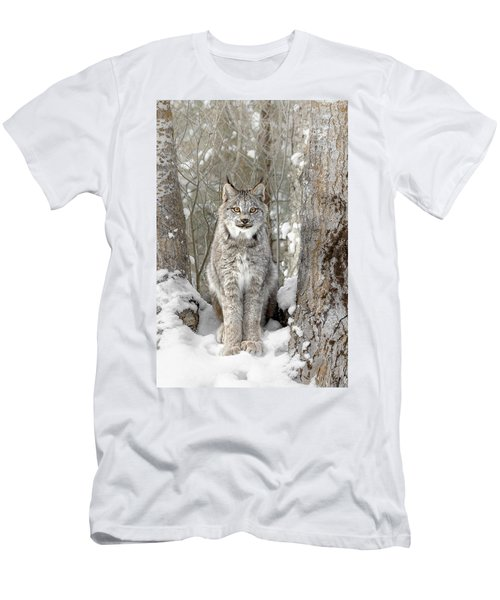 Canadian Wilderness Lynx Men's T-Shirt (Slim Fit) by Wes and Dotty Weber