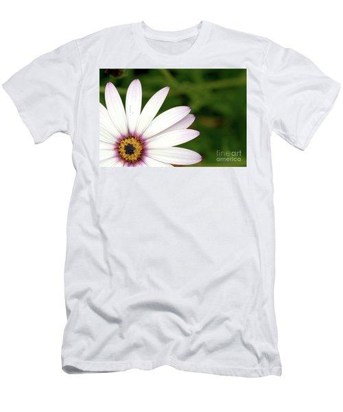 Cape Daisy Men's T-Shirt (Slim Fit)