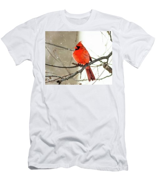 Cardinal In The Snow Men's T-Shirt (Slim Fit) by Ursula Lawrence