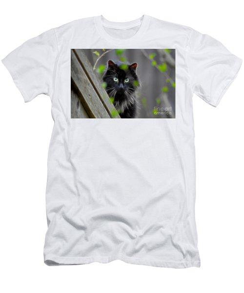 Cat Eyes Men's T-Shirt (Athletic Fit)