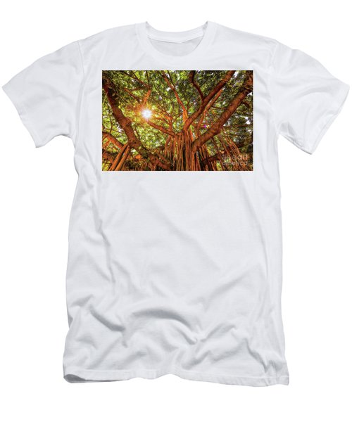 Catch A Sunbeam Under The Banyan Tree Men's T-Shirt (Athletic Fit)