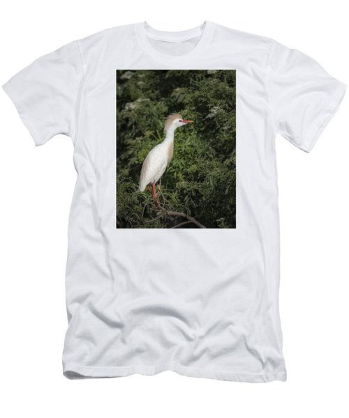 Men's T-Shirt (Slim Fit) featuring the photograph Cattle Egret by Tyson and Kathy Smith