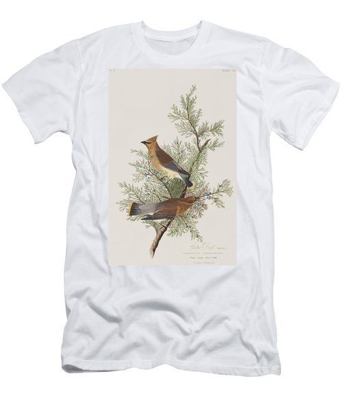 Cedar Bird Men's T-Shirt (Athletic Fit)