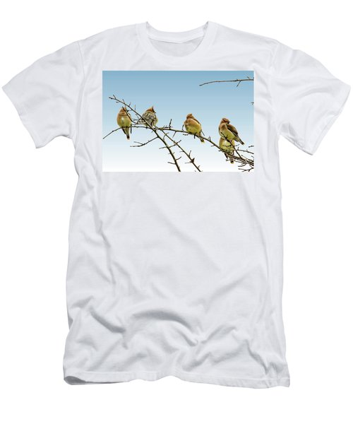 Cedar Waxwings Men's T-Shirt (Slim Fit) by Geraldine Scull