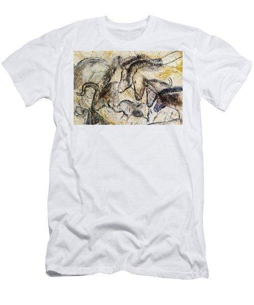 Chauvet Horses Aurochs And Rhinoceros Men's T-Shirt (Athletic Fit)