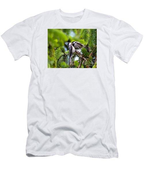 Chickadee Feeding Time Men's T-Shirt (Slim Fit) by Kerri Farley