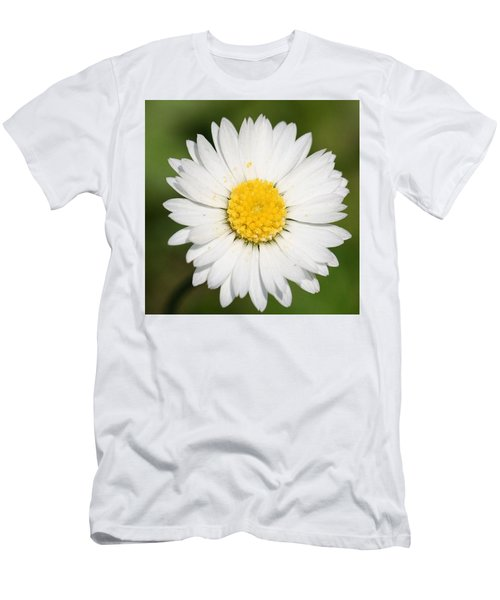 Closeup Of A Beautiful Yellow And White Daisy Flower Men's T-Shirt (Athletic Fit)